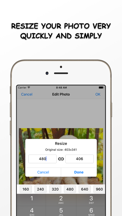 Photo Resizer - Resize and Filter your image Free screenshot one