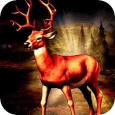 Activities of African Deer Hunting 2016:Animal Hunting Challenge