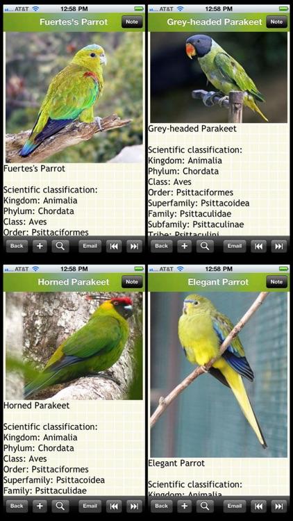 The Parrots Bible