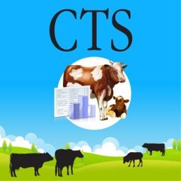 CattleMoves