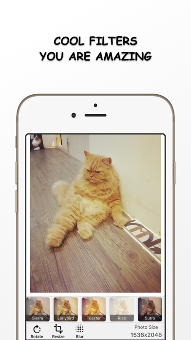 Photo Resizer - Resize and Filter your image Free screenshot two