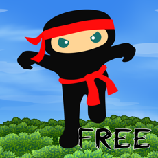 Activities of Ninja Fall Quest Free Edition