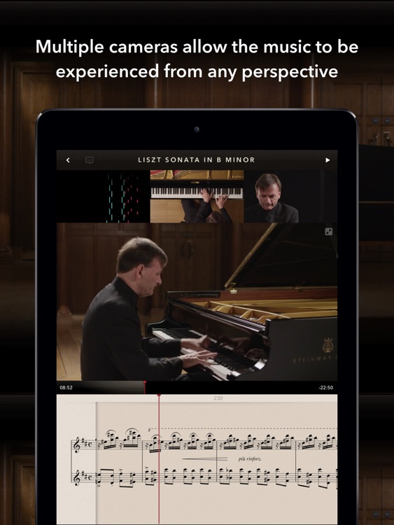The Liszt Sonata screenshot-1