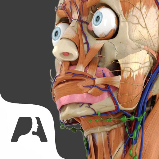 Pocket Anatomy - Interactive 3D Human Anatomy Pro by vido shimmur