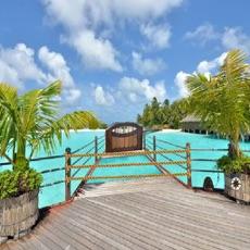 Activities of Luxury Beach Resort Escape