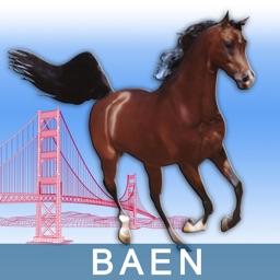 BAEN - Bay Area Equestrian Network