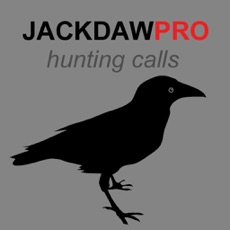 Activities of Jackdaw Calls for Hunting - BLUETOOTH COMPATIBLE