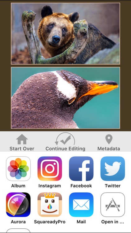 LineUpper - Put two pics in one for Instagram