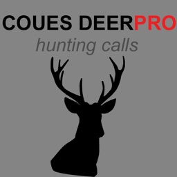 Coues Deer Calls & Coues Deer Sounds