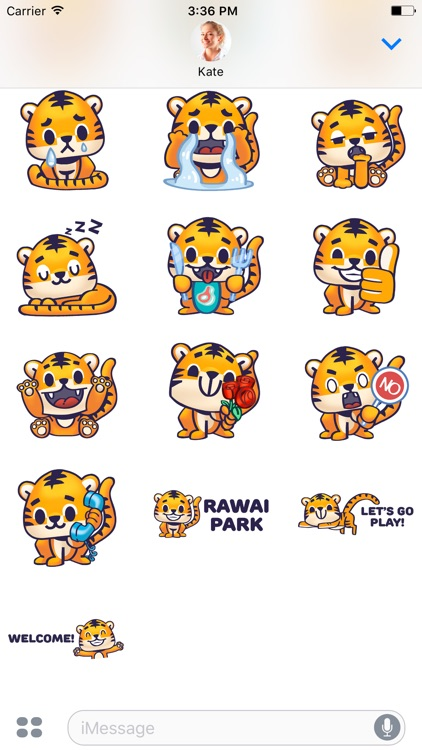 Rawai Tiger - baby tiger stickers for kids park screenshot-3