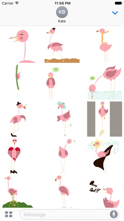 Pink Flamingo Animated