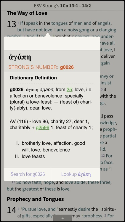 NRSV Bible by Olive Tree screenshot-3