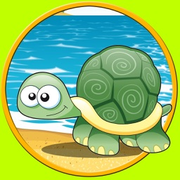 nices turtles for kids - no ads