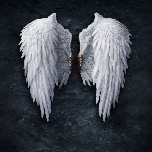 Angel Wings Wallpapers HD: Art Pictures
