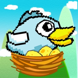 Bird to Nest HD