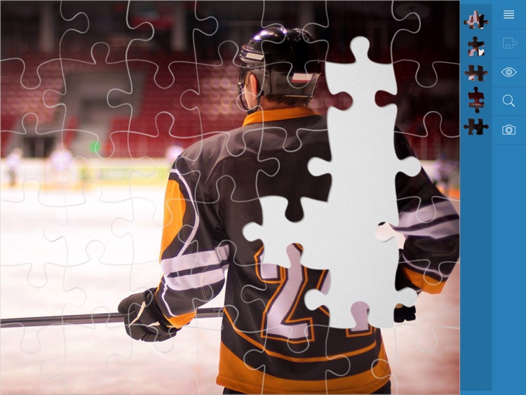Jigsaw Puzzles Active Life