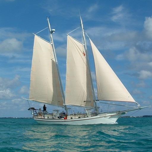 Sailboats HD