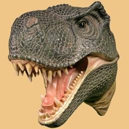 Dinosaur Head Camera