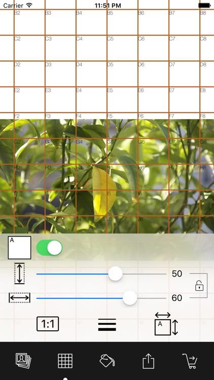 Drawing Grid