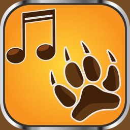 Animal Ringtones Soundboard – Crazy Noises and Funny Sound Effects Free