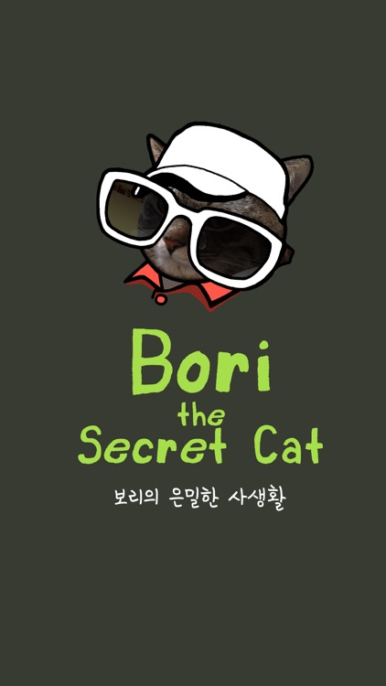 Bori The Secret Cat screenshot-0