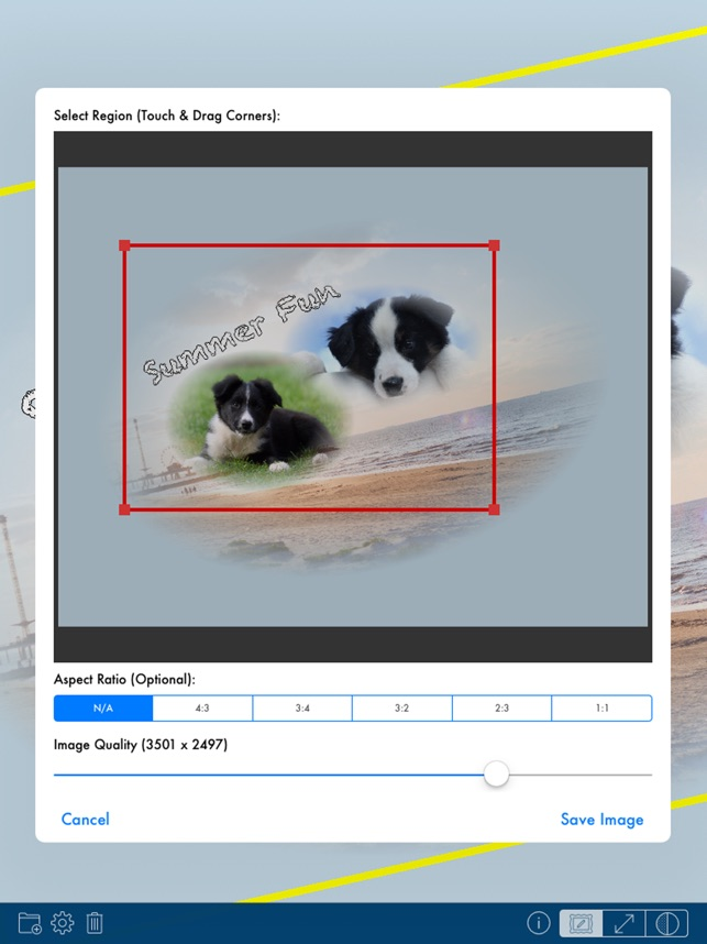 PhotoTangler - Best Collage Maker to Blend Photos Screenshot