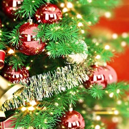Christmas Songs and Carols for a perfect Holiday