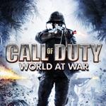 Call of Duty: World at War Companion