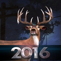 Codes for Bow Hunter 2016 Hack