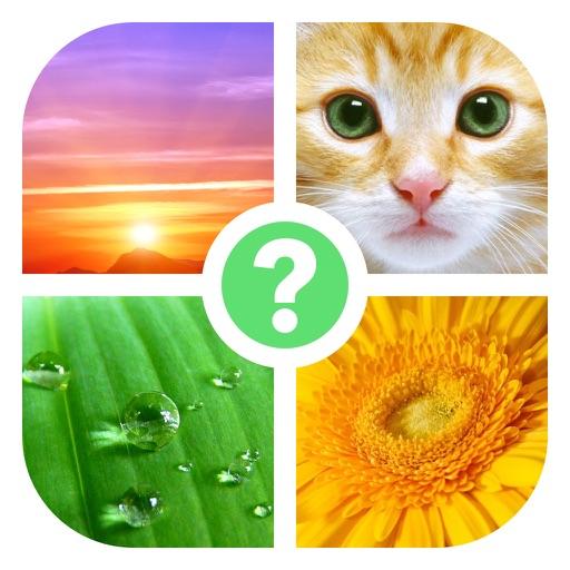 4 Images: Quel est le mot?