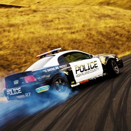 Police Stunts Crazy Driving School Real Race Game