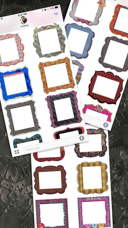 Awesome Craft Photo Frame Stickers screenshot-3