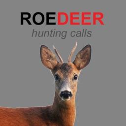 Roe Deer Calls for Deer Hunting