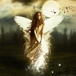 Best Angel Wallpapers HD