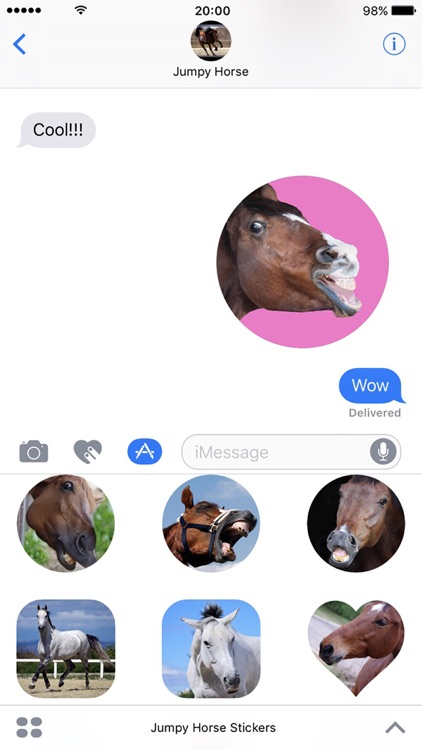 Jumpy Horse Stickers