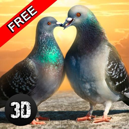 Tauben Vogel Überleben Simulator 3D