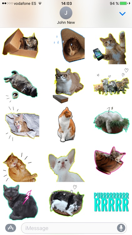 Let's Meow! - Cat Sticker Pack for Cat Lovers!