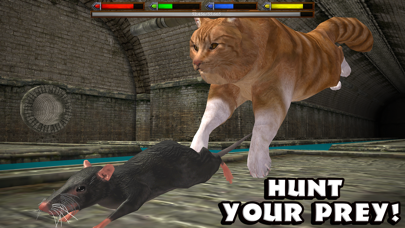 Ultimate Cat Simulator by Gluten Free Games (iOS, United