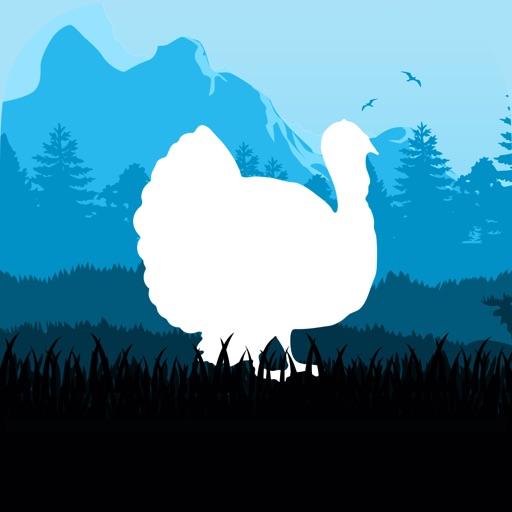 Turkey Huntings Calls .!