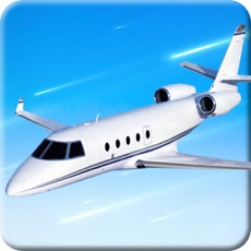 Activities of Perfect Airplane Pilot Flight Simulator