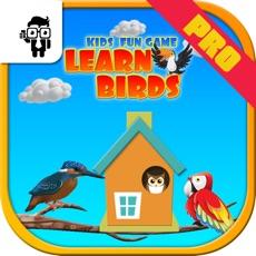 Activities of Pro Kids Fun Game Learn Birds