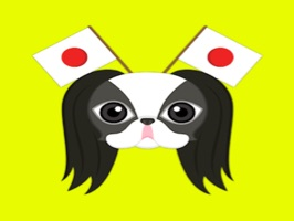 Are you a Japanese Chin puppy lover