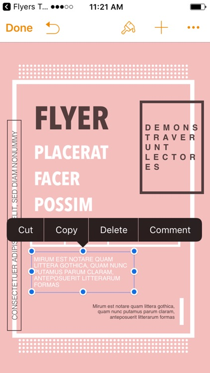Flyers Templates for Pages screenshot-3