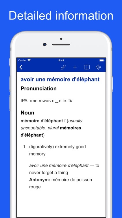 French Idiom Dictionary