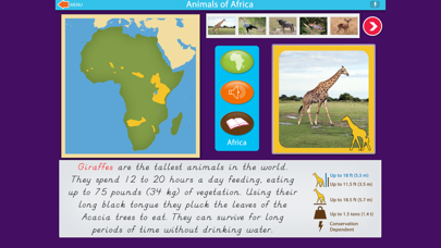 Montessori Animals of Africa screenshot 3
