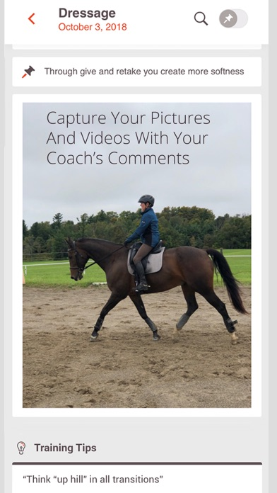 Levade - Equestrian TrainingScreenshot von 3