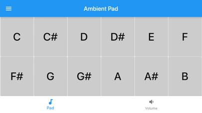 Ambient Pad Pro screenshot 1