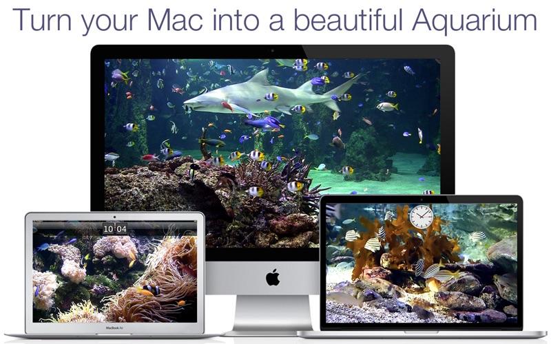 Aquarium Live HD+ Screensaver Screenshots