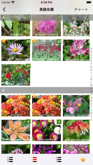 https://is4-ssl.mzstatic.com/image/thumb/PurpleSource114/v4/23/f1/c0/23f1c0ef-3486-52ea-ccb9-30562af061de/edc81d94-5d3a-485d-ad69-685658cecffb_Simulator_Screen_Shot_-_iPhone_8_Plus_-_2021-02-28_at_18.59.56.jpeg/392x696bb.jpg