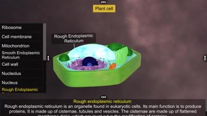 Prokaryotic & Eukaryotic cell screenshot 8